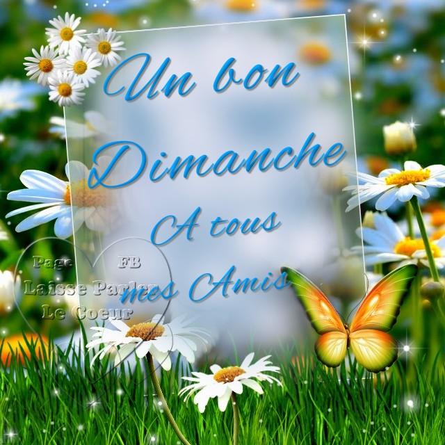 Bonjour du jour et bonsoir du soir - Page 31 Dimanc11