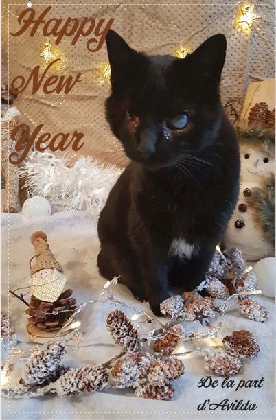 Bonne année d'Avilda ! Avilda10