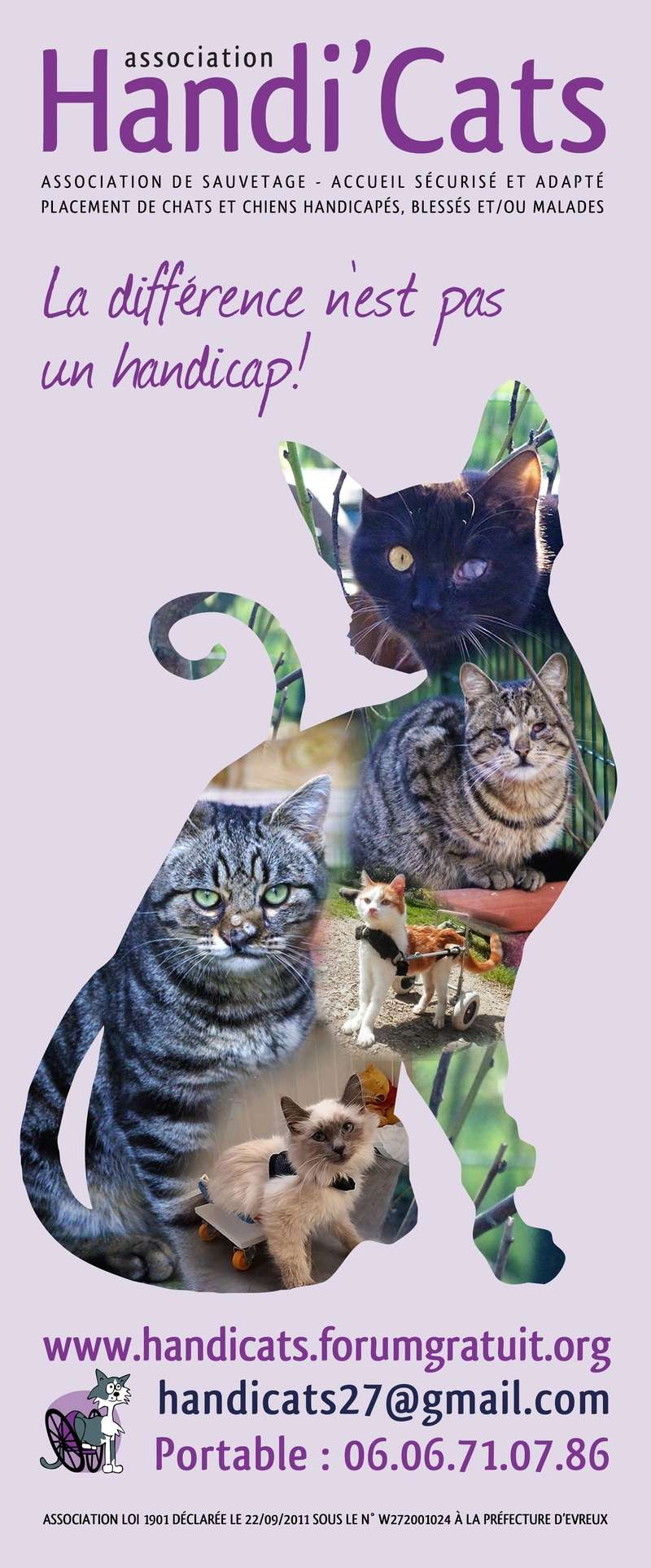 Affiche Handi'cats Flyer_10