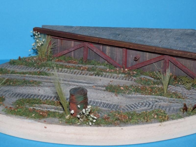 Diorama pour mon Nashorn... P1010116