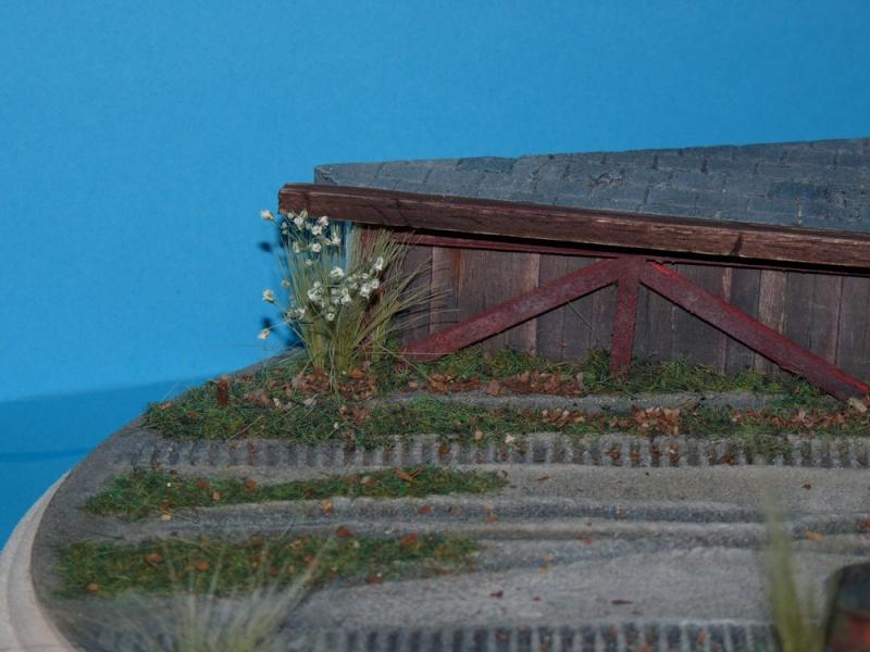 Diorama pour mon Nashorn... P1010117