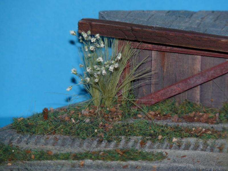 Diorama pour mon Nashorn... P1010120