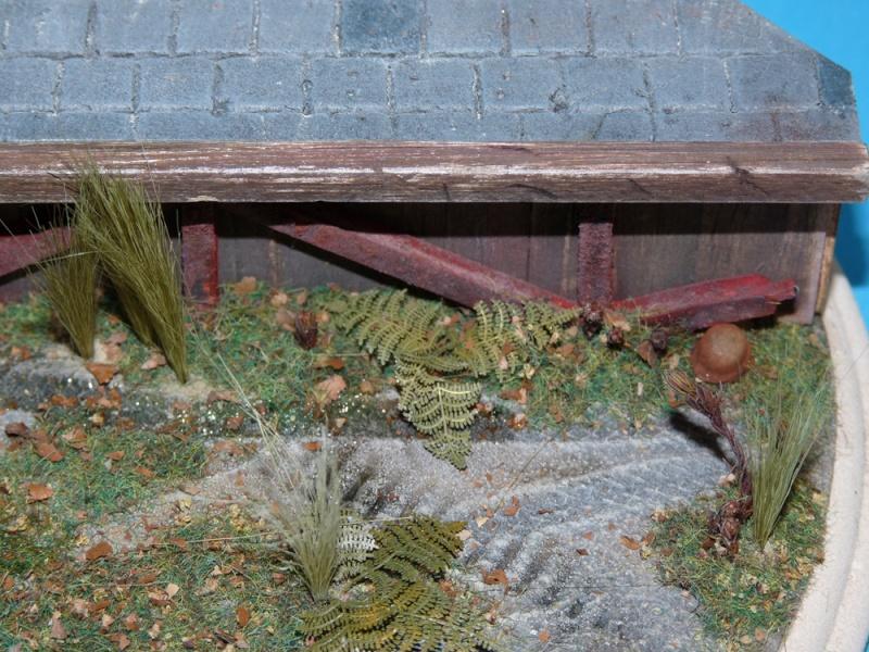 Diorama pour mon Nashorn... P1010123