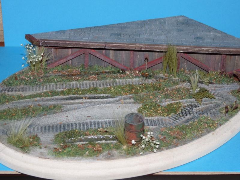 Diorama pour mon Nashorn... P1010125
