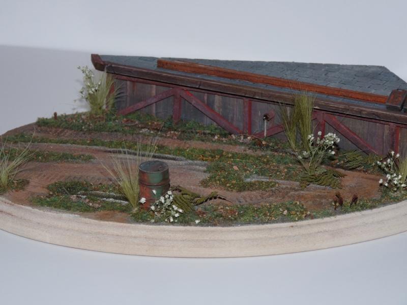 Diorama pour mon Nashorn... P1010131