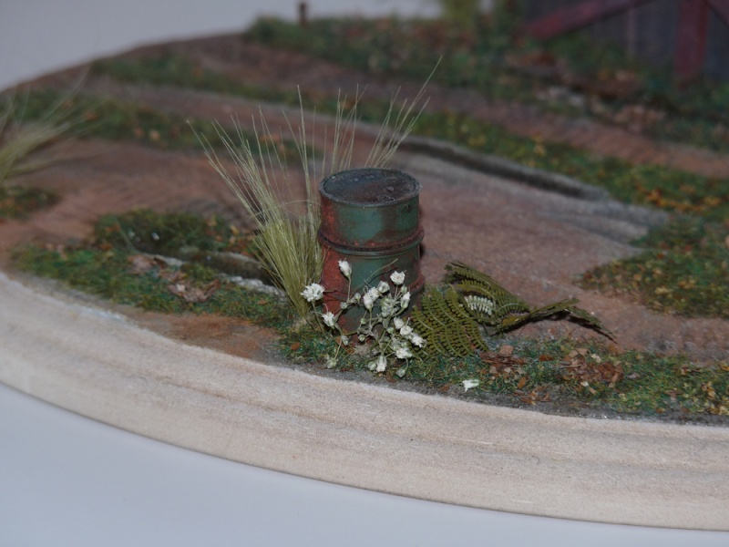 Diorama pour mon Nashorn... P1010132
