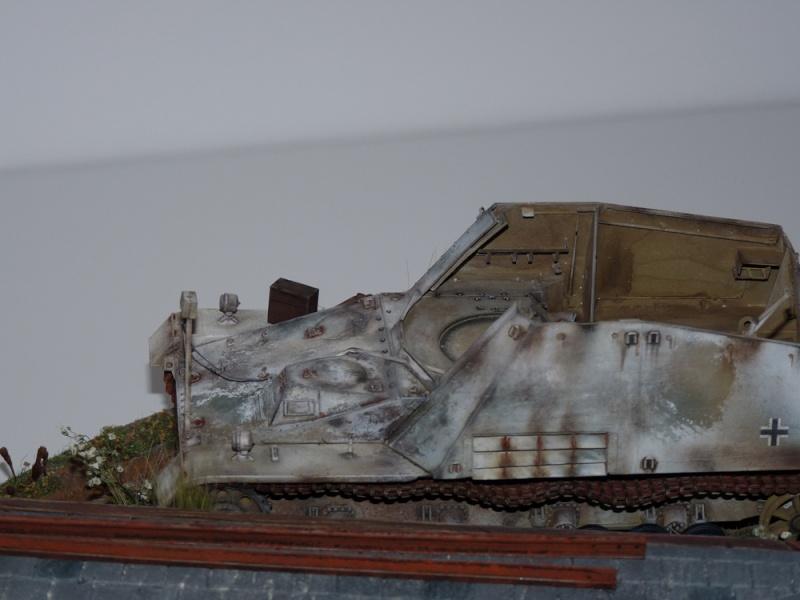 Diorama pour mon Nashorn... P1010136