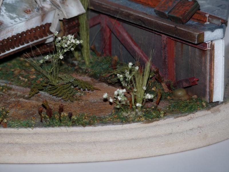 Diorama pour mon Nashorn... P1010138
