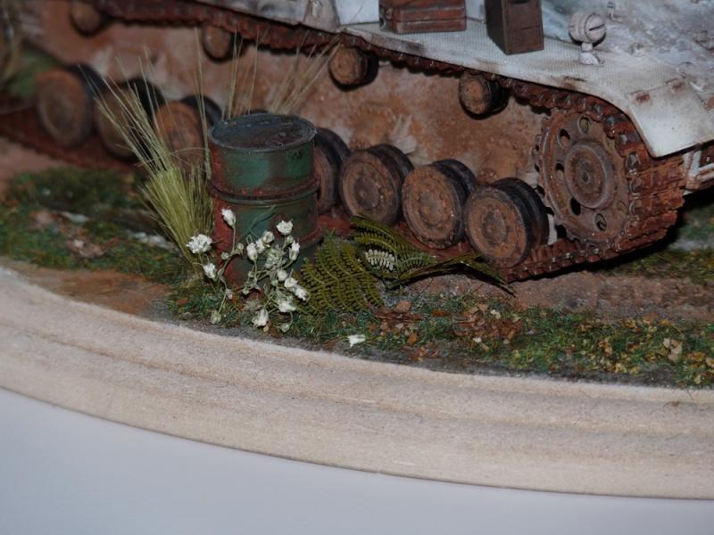 Diorama pour mon Nashorn... P1010139