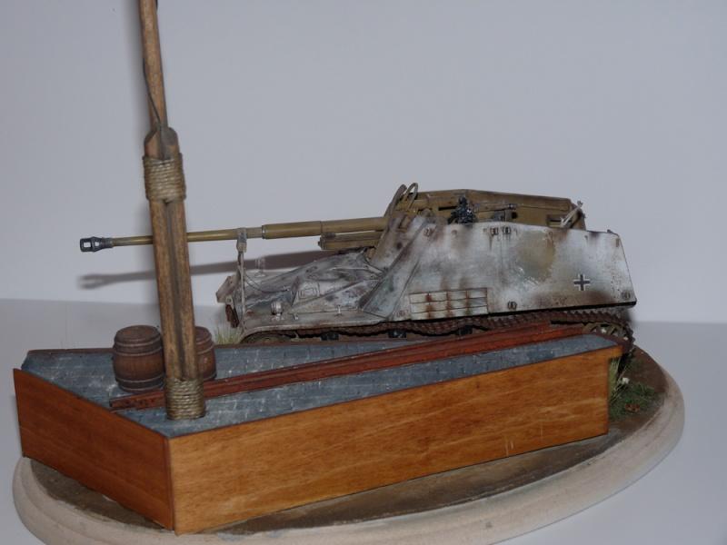 Diorama pour mon Nashorn... P1010216