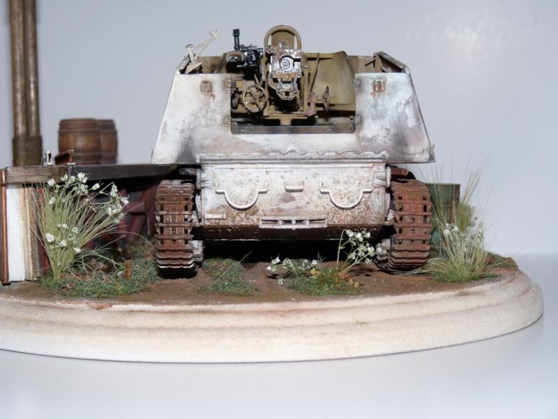Diorama pour mon Nashorn... P1010217