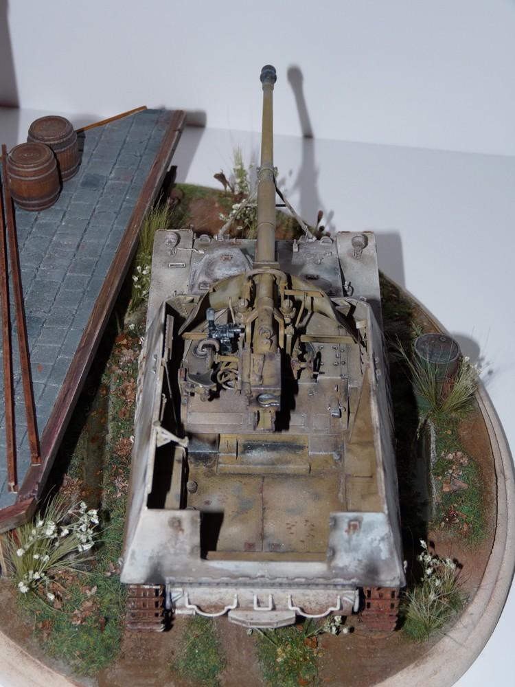 Diorama pour mon Nashorn... P1010218