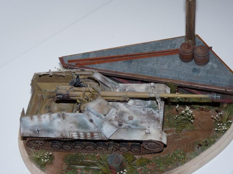 Diorama pour mon Nashorn... P1010221