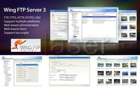 Wing FTP Server v3.4.5 Corporate Edition Multilingual Wing_f10