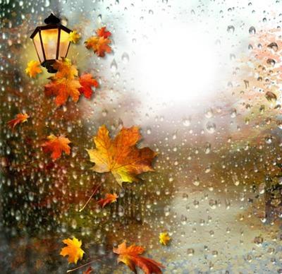 l'automne - Page 3 24817310