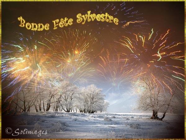 fête  à  souhaiter   - Page 4 Sylves10