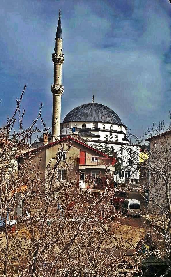 Göynem'den karma resimler-Şubat-Mart 2018 Ky3_sc10