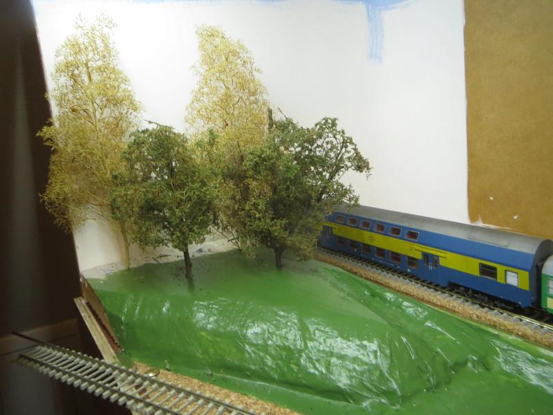 Chemin de fer Polonais HO Img_0929
