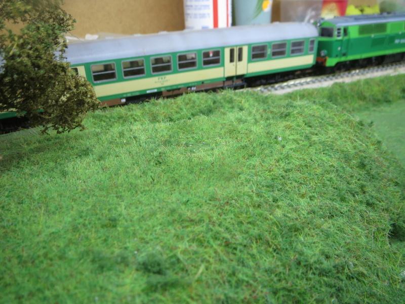 Chemin de fer Polonais HO Img_0937