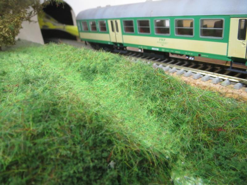 Chemin de fer Polonais HO Img_0938
