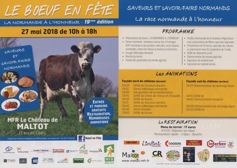 """le """"Boeuf en fête"""", 2018 à MALTOT  Boeuf_10"""