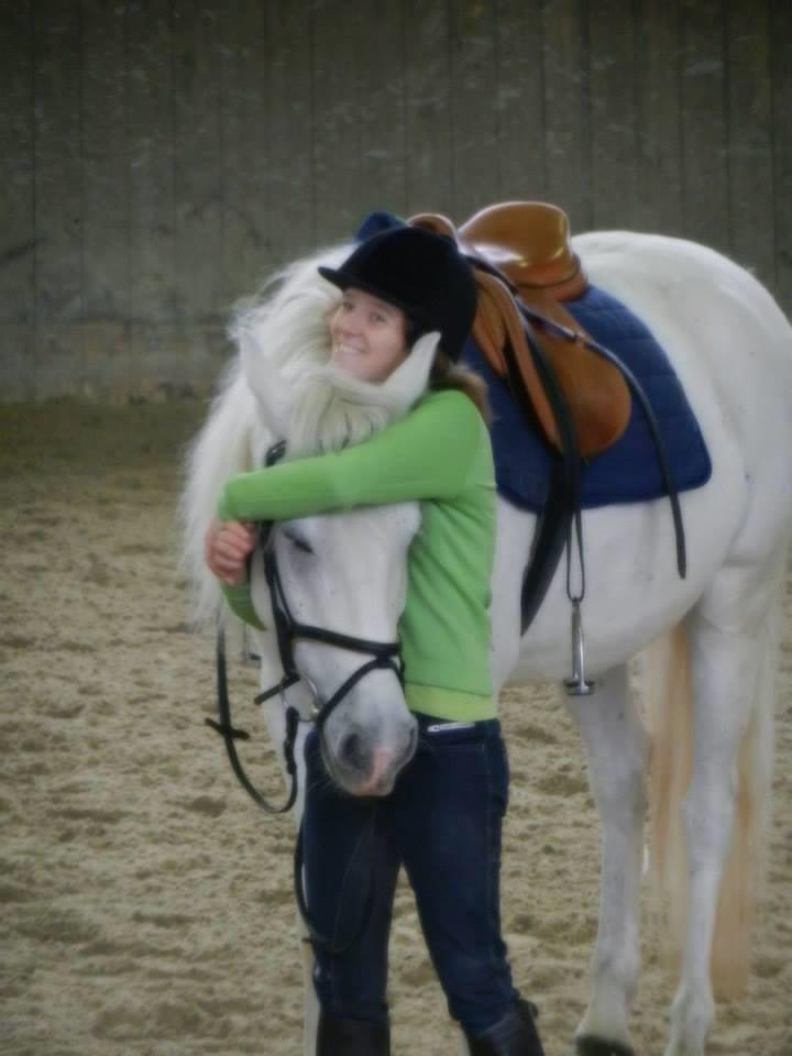 Damon, lusitanien, blanc,10 ans en janvier 2018, est adopté. 14243810