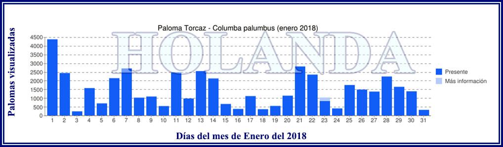 LA PASA en HOLANDA durante Enero, Febrero y Marzo Grafic19