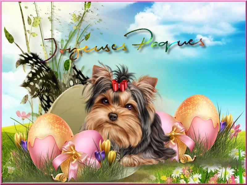 Vote concours Fêtes de Pâques  Etoile14