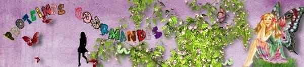 RECAP BANNIERE PROTEINES GOURMANDES & RESULTATS Bannie11