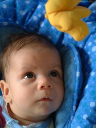 Les bédaines - semaine du 10 au 16 mai 2009 Dscf3711