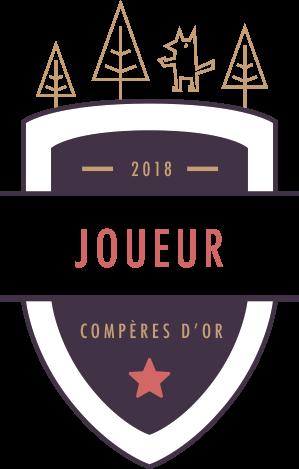 Candidature Medman Joueur11