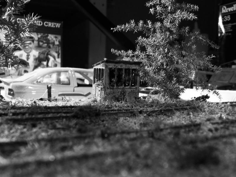 Wagon abandonné.... Sdc11313