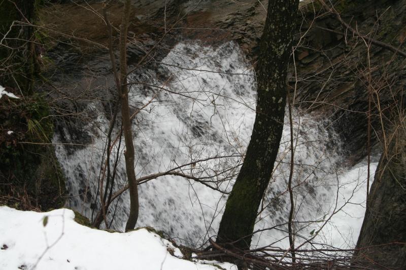 Ruscelli e cascate della foresta della Lama (31/01/09) 31-01-30