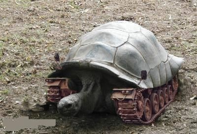 Future Tank Animal18