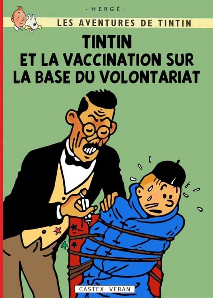 Sondage Vaccin - Page 2 Tintin10