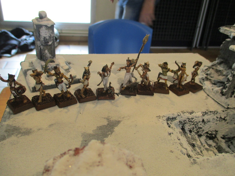 L'armée du grand sorcier Magnus Bouletus Felixus Img_0126
