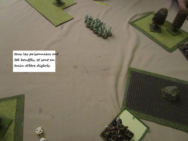 et encore deux scénarios dragon rampant Img_0761