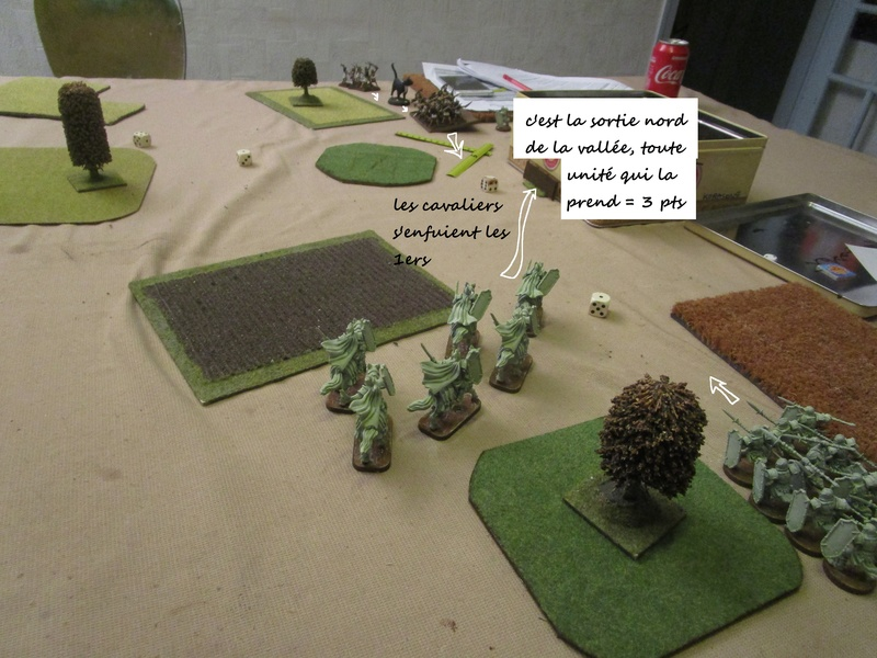 et encore deux scénarios dragon rampant Img_0770