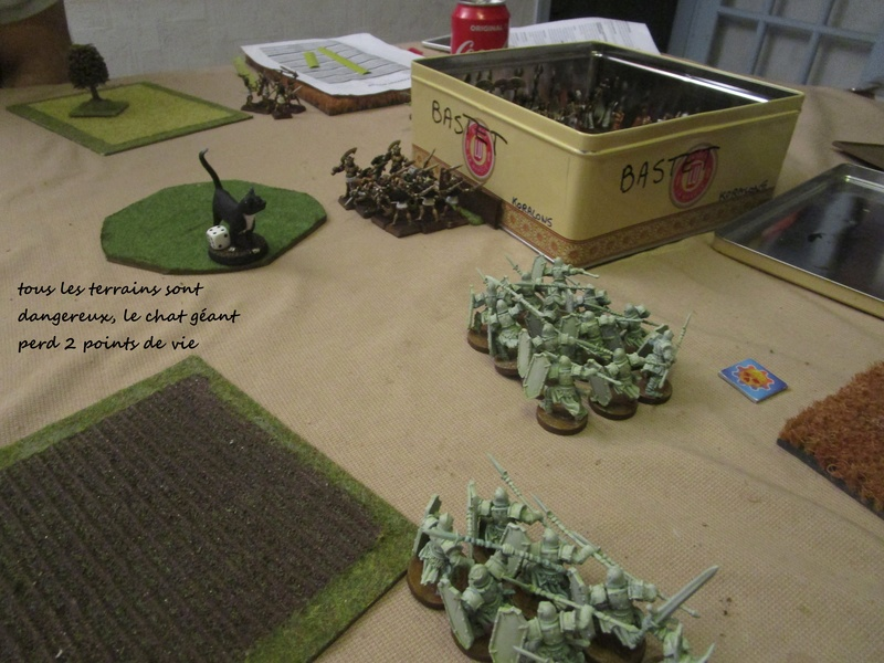 et encore deux scénarios dragon rampant Img_0773