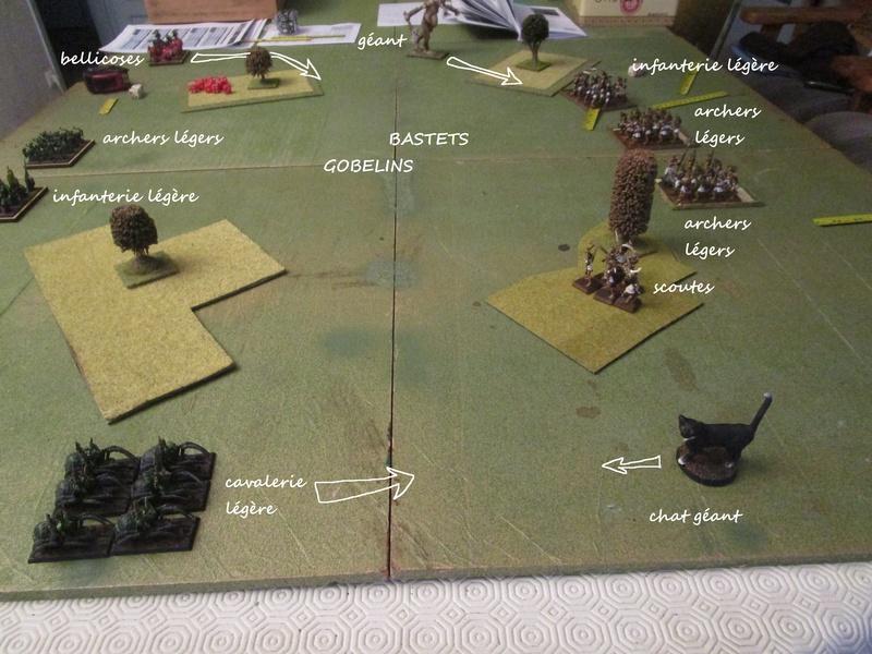 Dragon rampant : chats contre gobs ; crocos contre skavens Img_0789