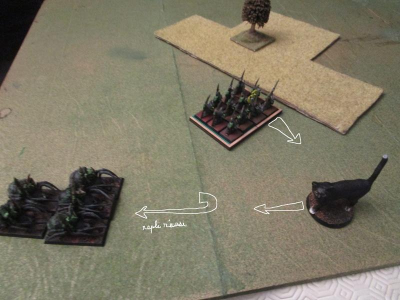 Dragon rampant : chats contre gobs ; crocos contre skavens Img_0791