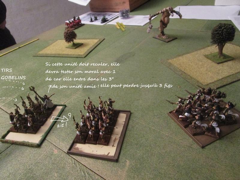 Dragon rampant : chats contre gobs ; crocos contre skavens Img_0792