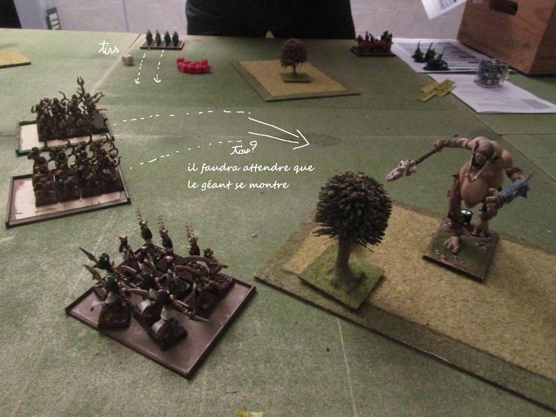 Dragon rampant : chats contre gobs ; crocos contre skavens Img_0793
