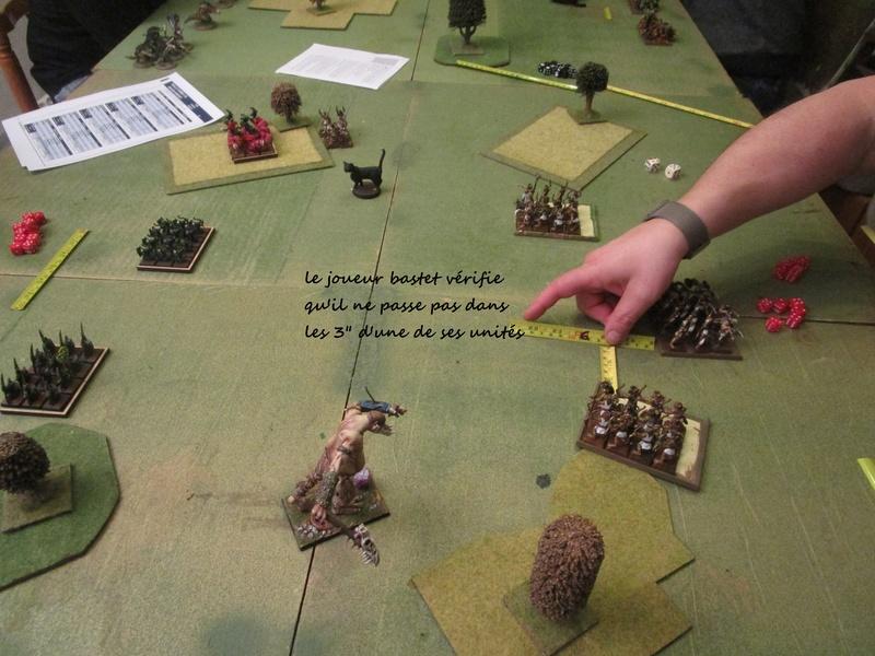 Dragon rampant : chats contre gobs ; crocos contre skavens Img_0794