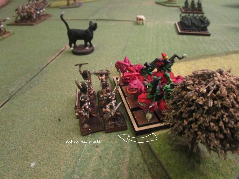 Dragon rampant : chats contre gobs ; crocos contre skavens Img_0797