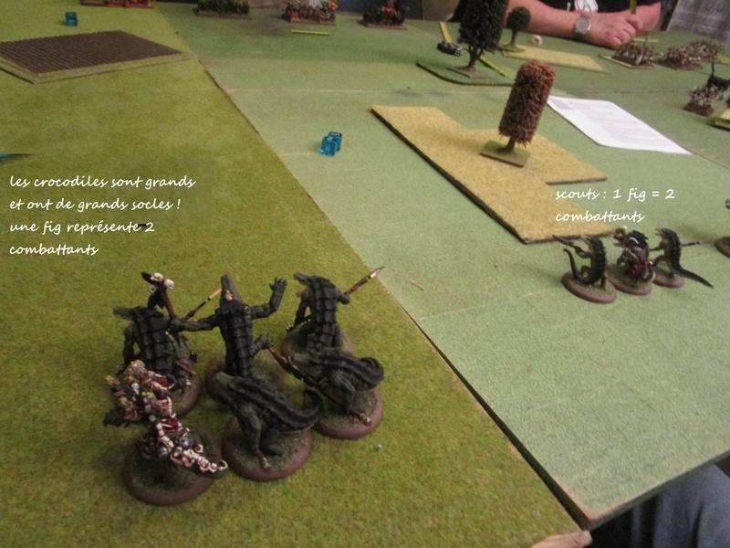 Dragon rampant : chats contre gobs ; crocos contre skavens Img_0798
