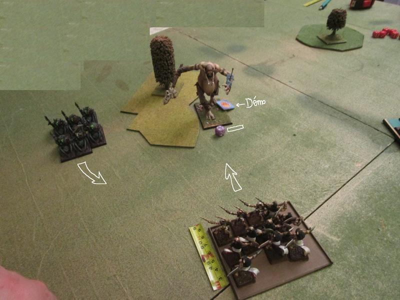 Dragon rampant : chats contre gobs ; crocos contre skavens Img_0810