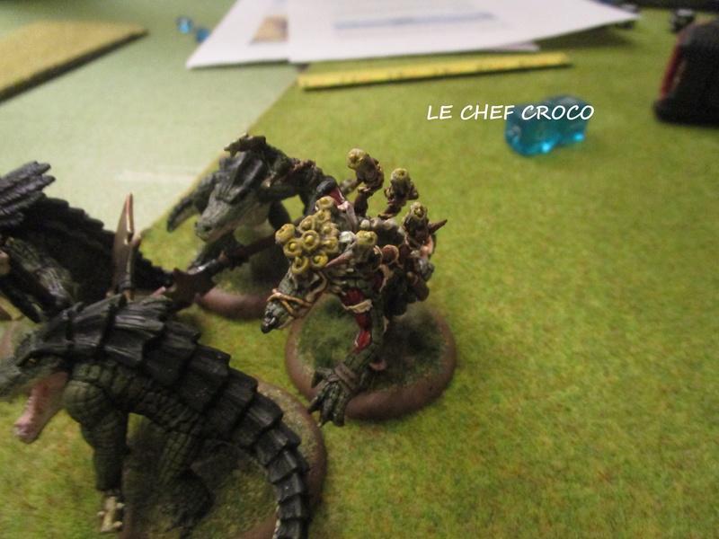 Dragon rampant : chats contre gobs ; crocos contre skavens Img_0811