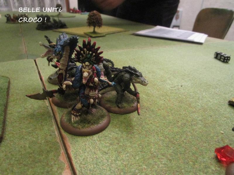 Dragon rampant : chats contre gobs ; crocos contre skavens Img_0812