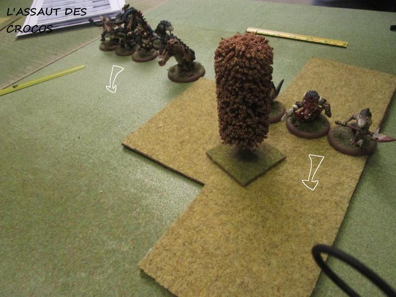 Dragon rampant : chats contre gobs ; crocos contre skavens Img_0814